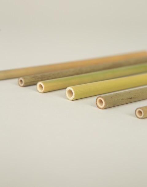 caja 6 pajitas bambú
