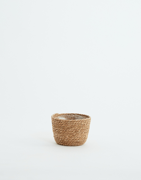 small basket planter