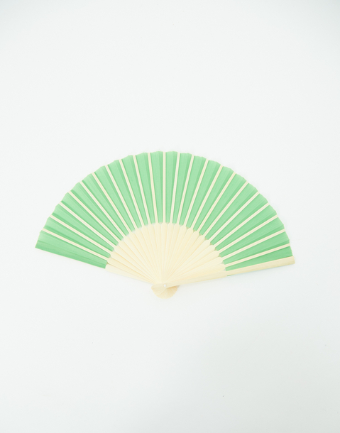 color bamboo fan