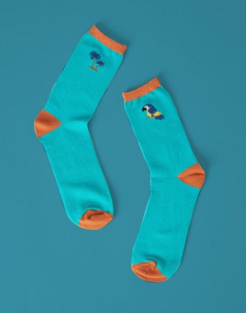 chaussettes perroquet et palmiers homme