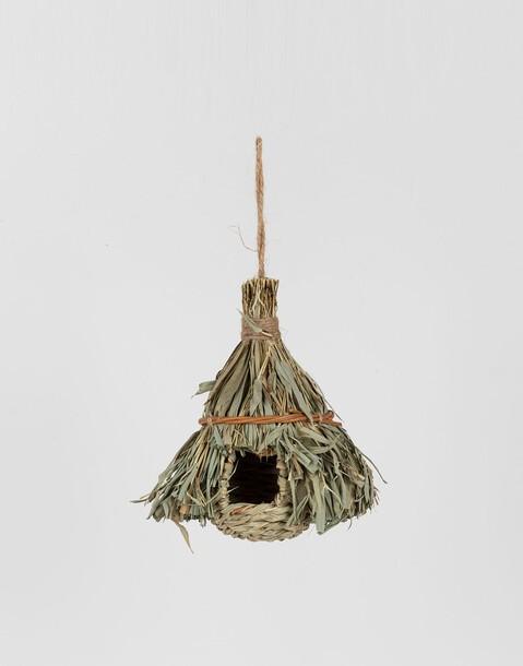 nido selva
