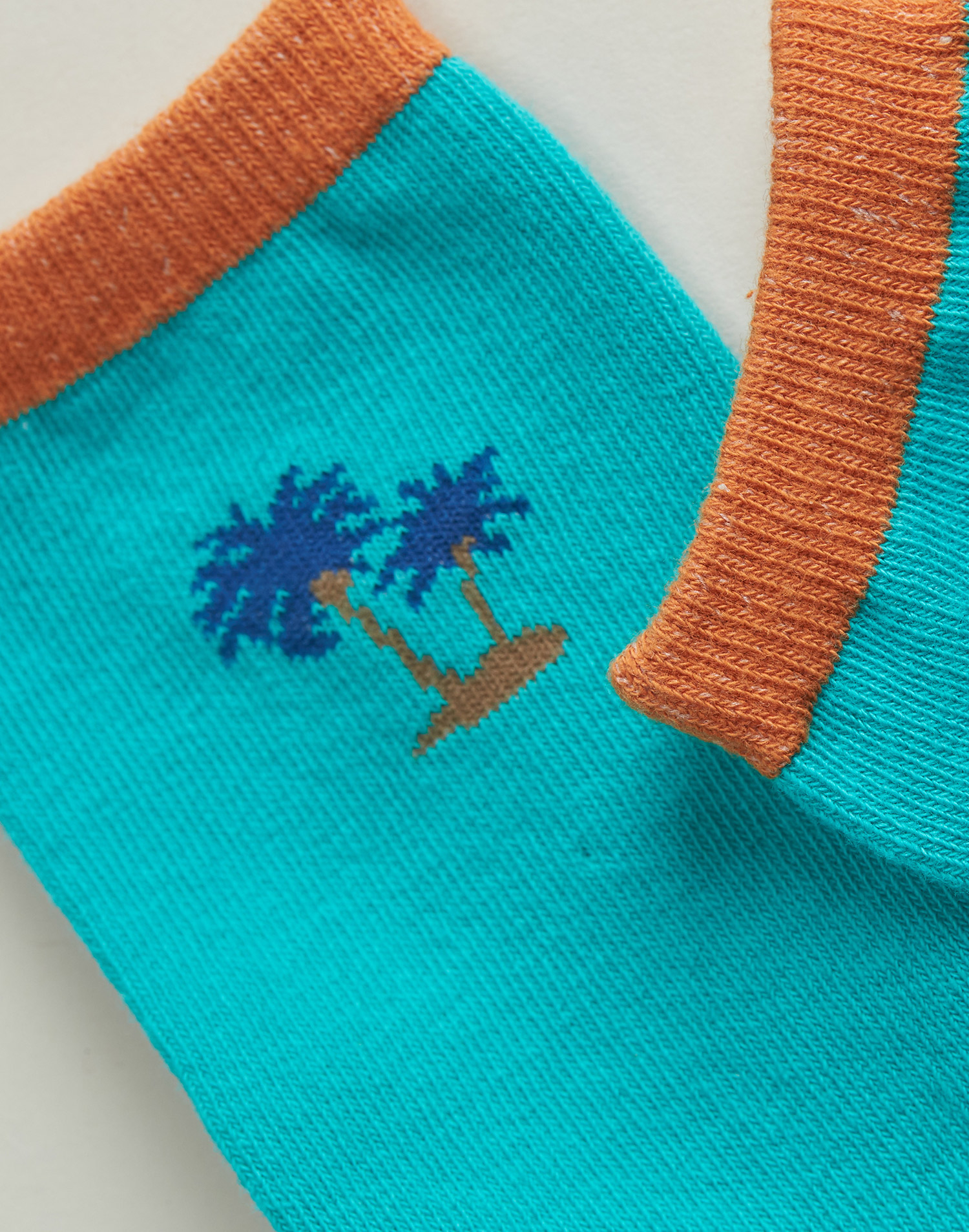 Parrot and palm tree man socks