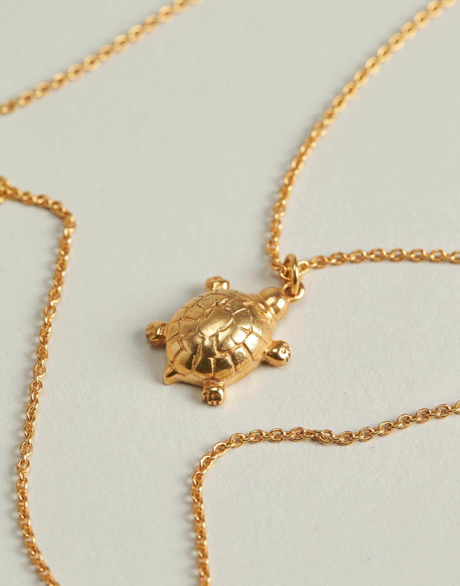 Gilded tortoise necklace