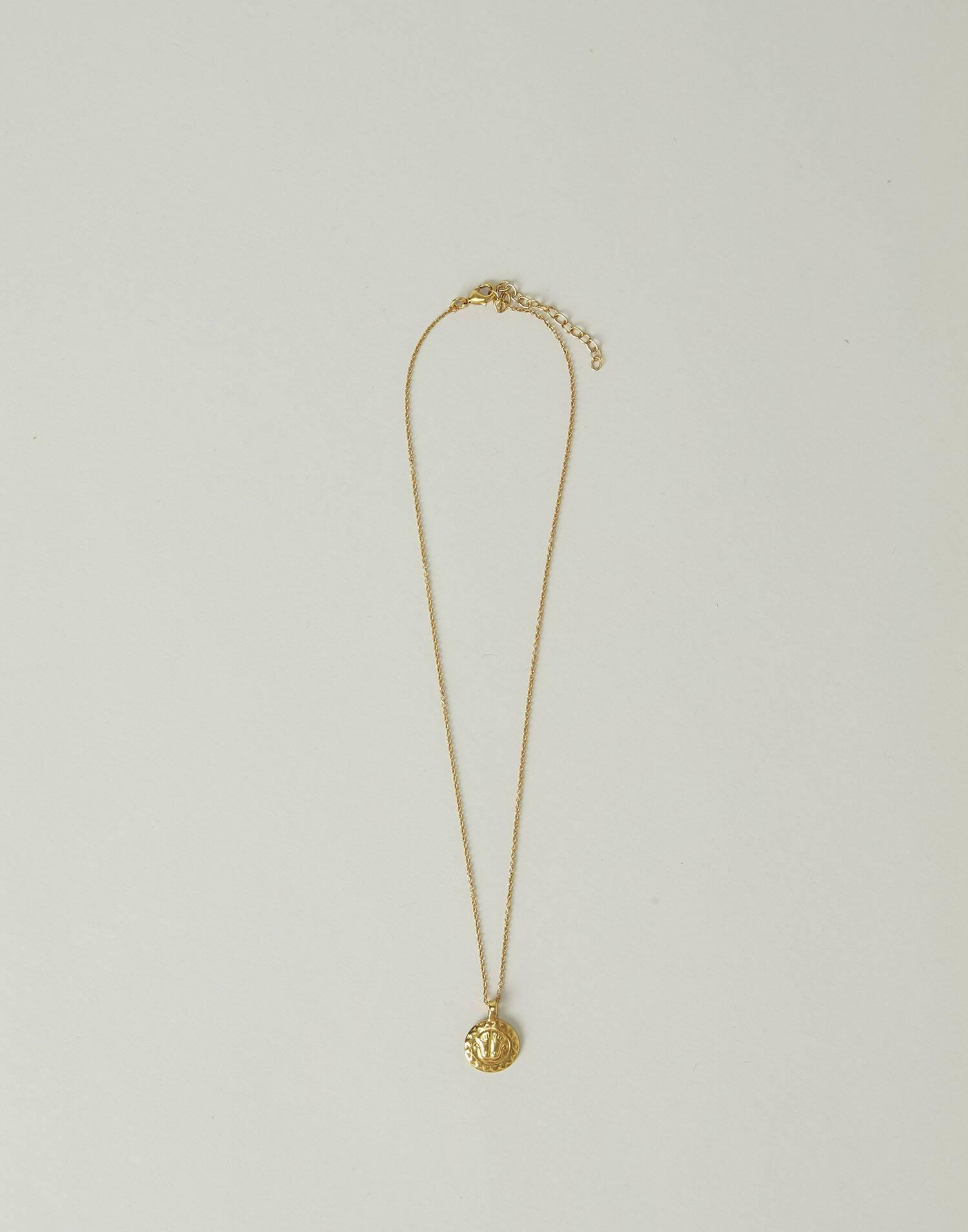 Collar medalla india baño de oro