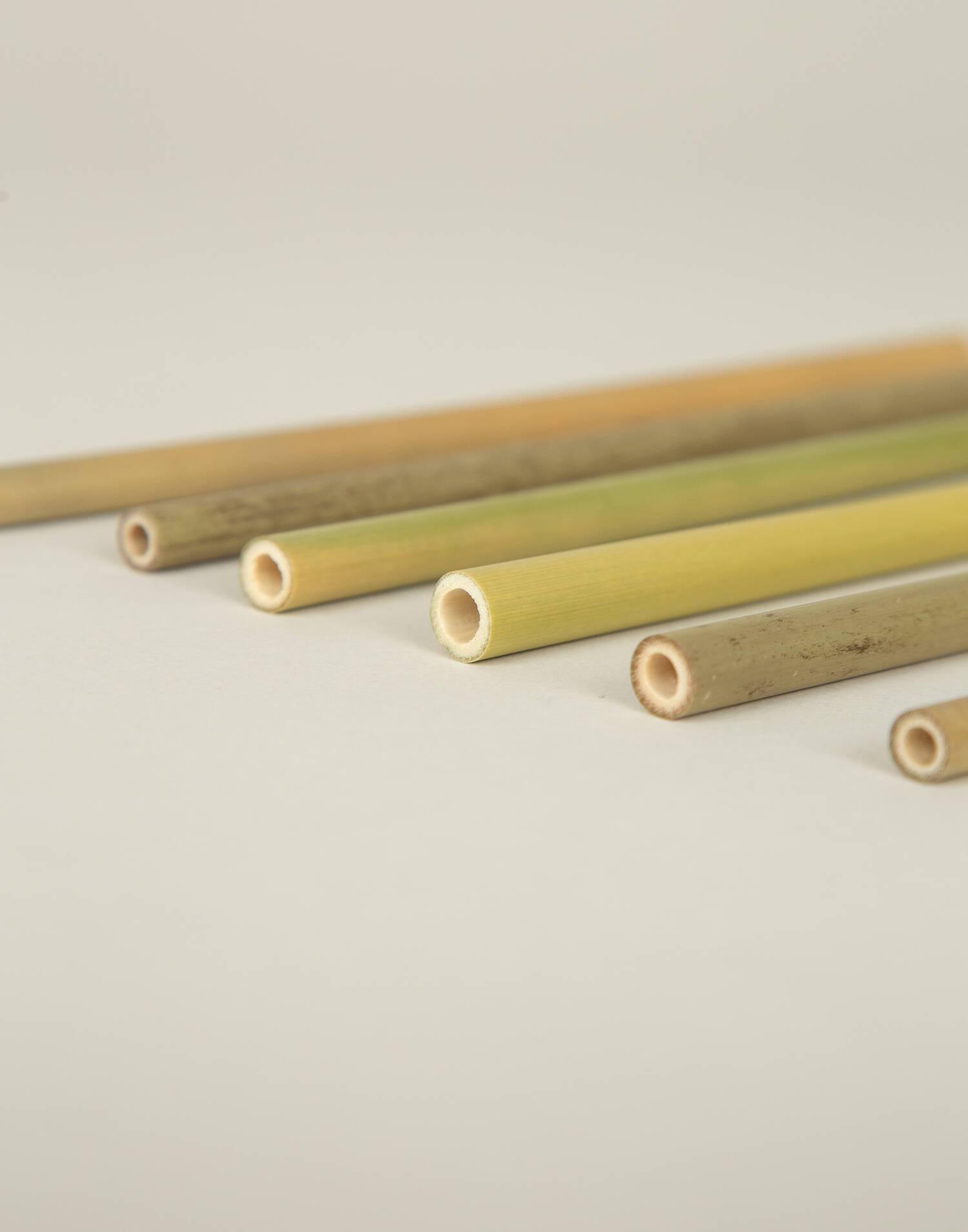 Schachtel mit sechs trinkhalmen aus bambus