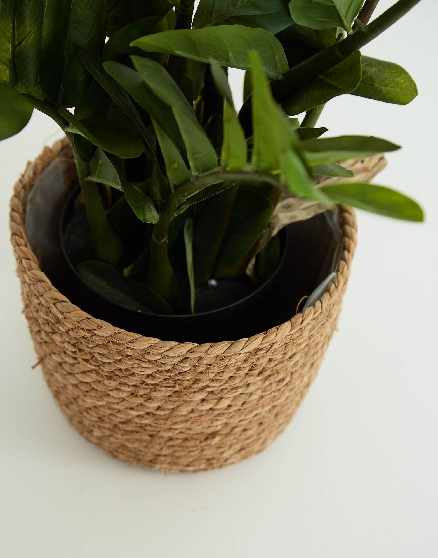 Cesto para plantas forrado s