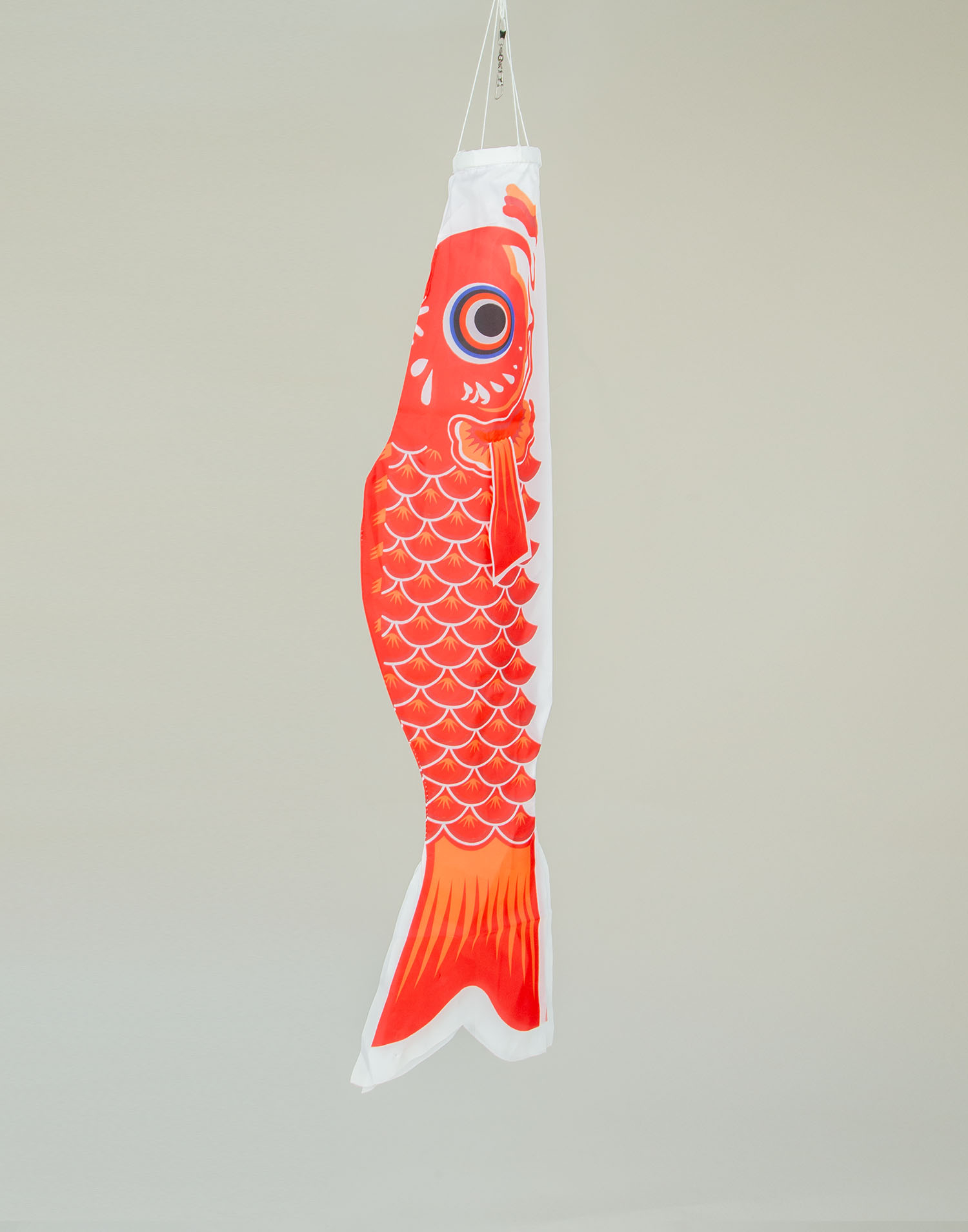 Medium size carp decorative banderole
